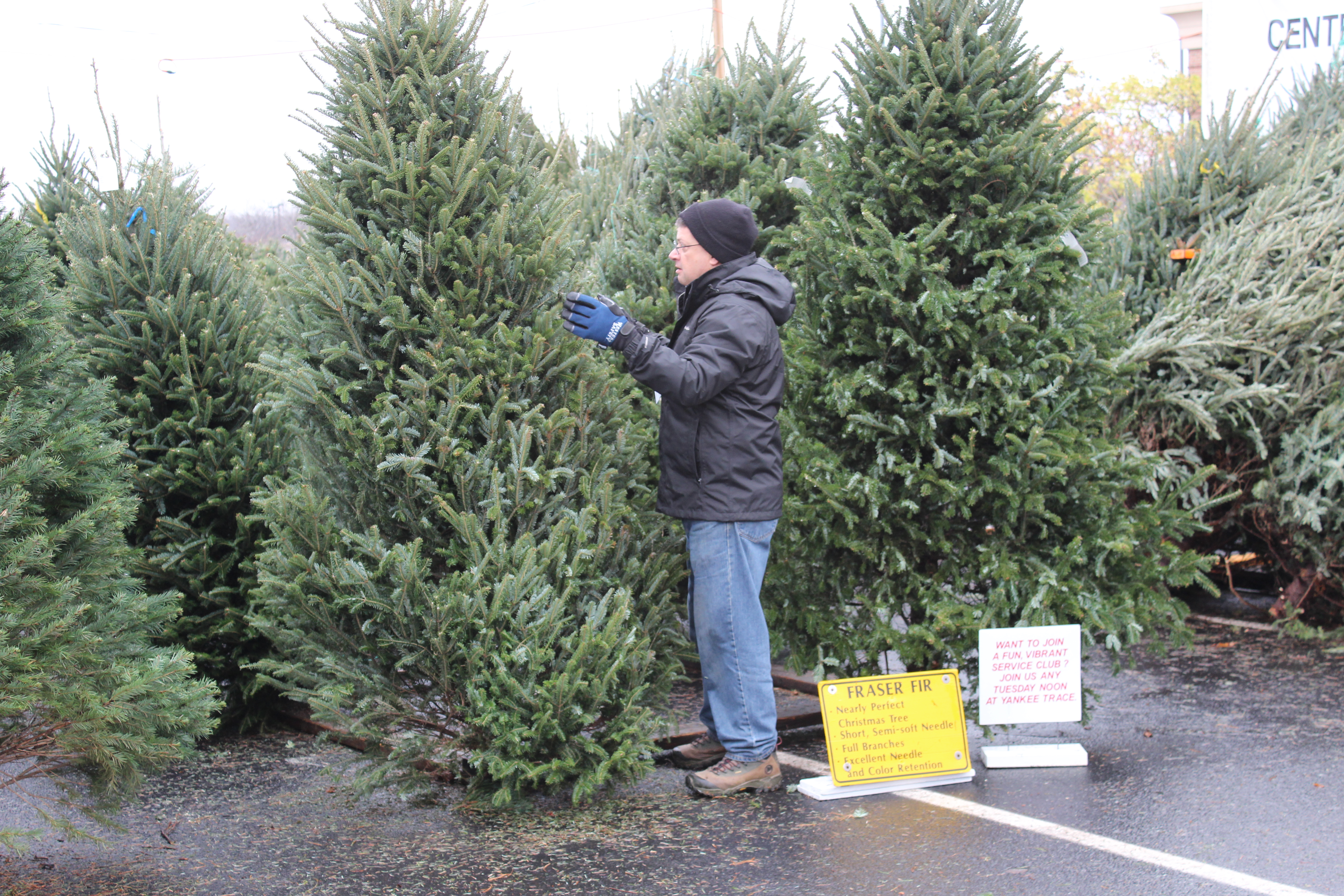 Christmas Tree Lot a HUGE Success in 2015!